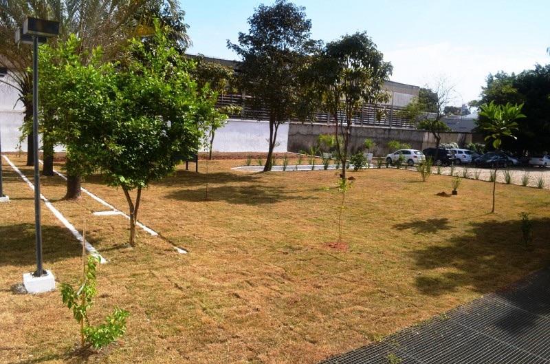 Espaço foi inaugurado pela Prefeitura de Araras na Festa das Árvores (Foto: Prefeitura de Araras)