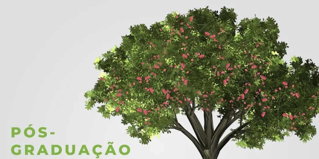 UFSCar oferece pós em Planejamento, Manejo e Restauração de Áreas Verdes. Imagem: Divulgação