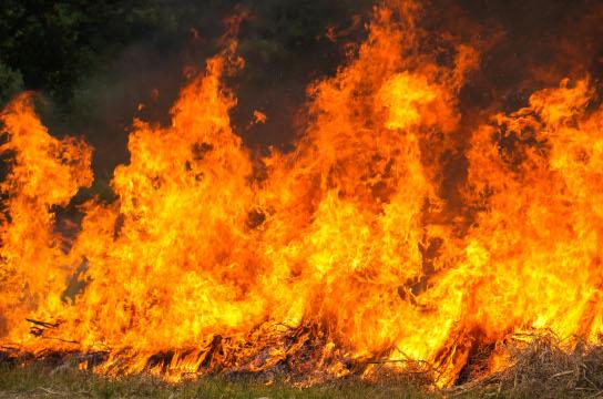 Estudo reflete sobre estratégias para a prevenção de queimadas (Imagem: ilovehz - br.freepik.com)